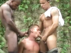 Three Way Jungle Fuck