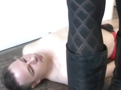 trampling ballbusting and licking boots