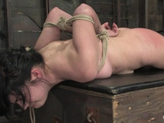 Andy San Dimas in Andy San Dimas In Her First Of Many HogTied Vistis.Tickled, Gagged, Suspended, M.
