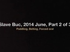 Slave Buc, June 2014, Part 2 of 3