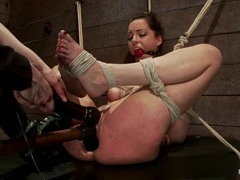 Bryn Blayne in Hot Young Bryn Blayne Bound And Fucked In Every Hole - HogTied