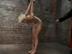 Cute blonde suffers the hardest hour on the internetThe Hogtied Live ShowStrict strappado