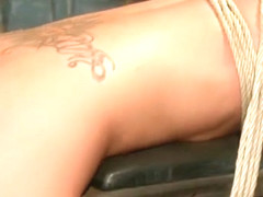 Lorelei Lee Melissa Jacobs Wired Pussy