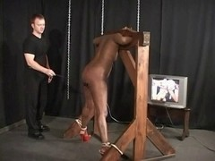 Dark chick fastened and caned