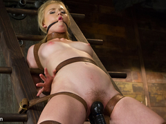 Tracey Sweet in Tracey Sweet - HogTied
